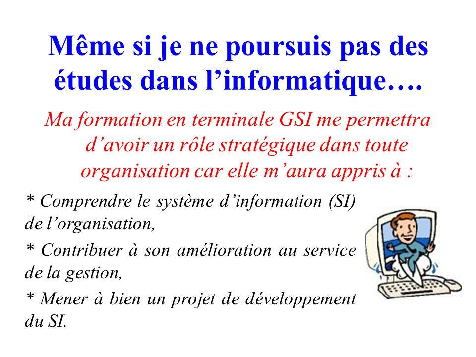 Série STG GSI Des perspectives de poursuite détudes extrêmement variées…. STG…GSI