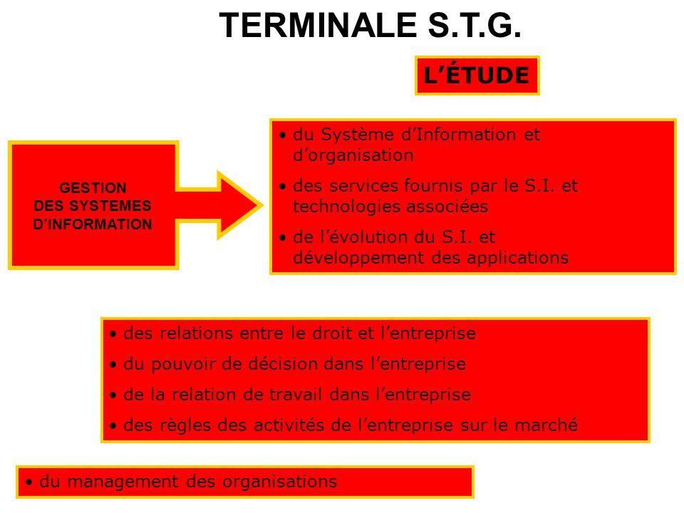Série STG GSI Un mode denseignement original qui met lélève dans des situations professionnelles proches du réel…. STG…GSI