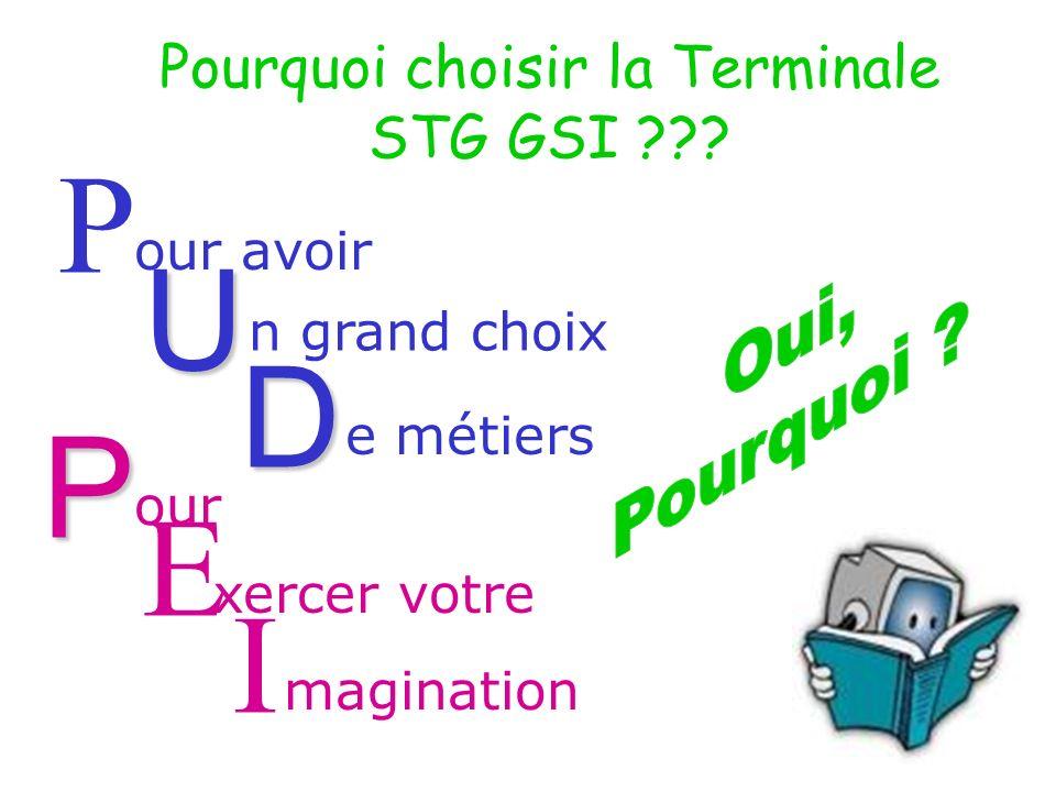 P our avoir U n grand choix D e métiers E xercer votre magination I Pourquoi choisir la Terminale STG GSI ??.