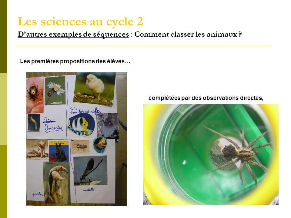Les sciences au cycle 2 Dautres exemples de séquences : Comment classer les animaux ? Les premières propositions des élèves… complétées par des observ