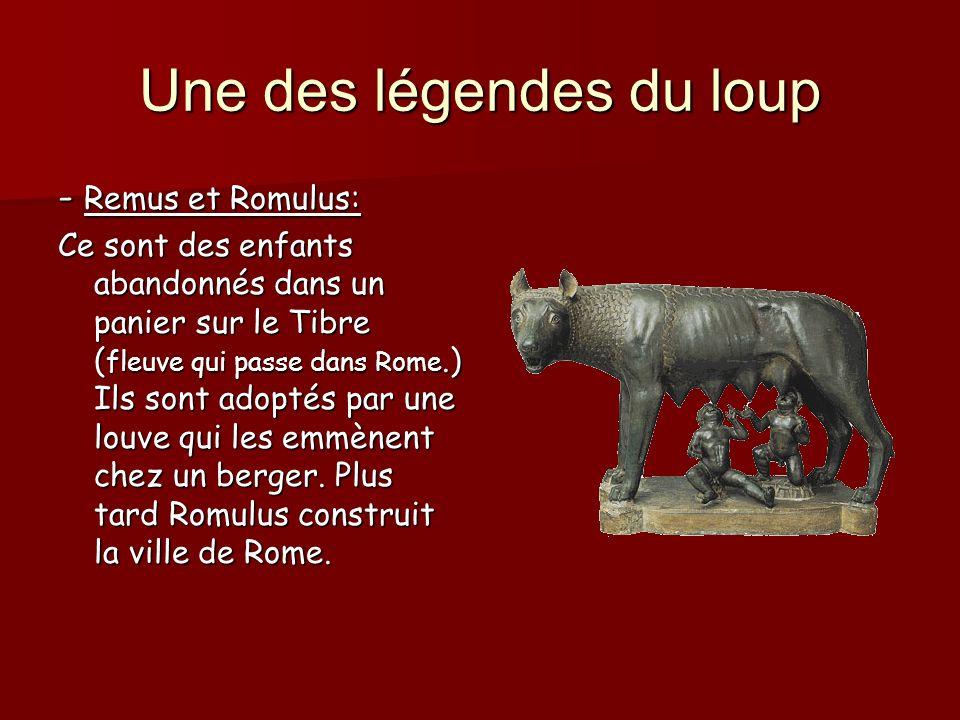 Une des légendes du loup - Remus et Romulus: Ce sont des enfants abandonnés dans un panier sur le Tibre ( fleuve qui passe dans Rome.) Ils sont adoptés par une louve qui les emmènent chez un berger.