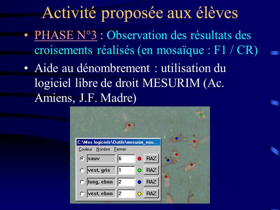 Activité proposée aux élèves PHASE N°3 : Observation des résultats des croisements réalisés (en mosaïque : F1 / CR) Aide au dénombrement : utilisation