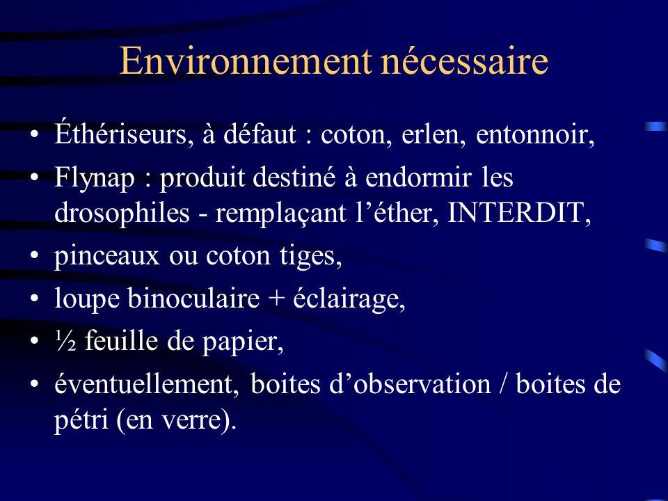Environnement nécessaire Éthériseurs, à défaut : coton, erlen, entonnoir, Flynap : produit destiné à endormir les drosophiles - remplaçant léther, INT