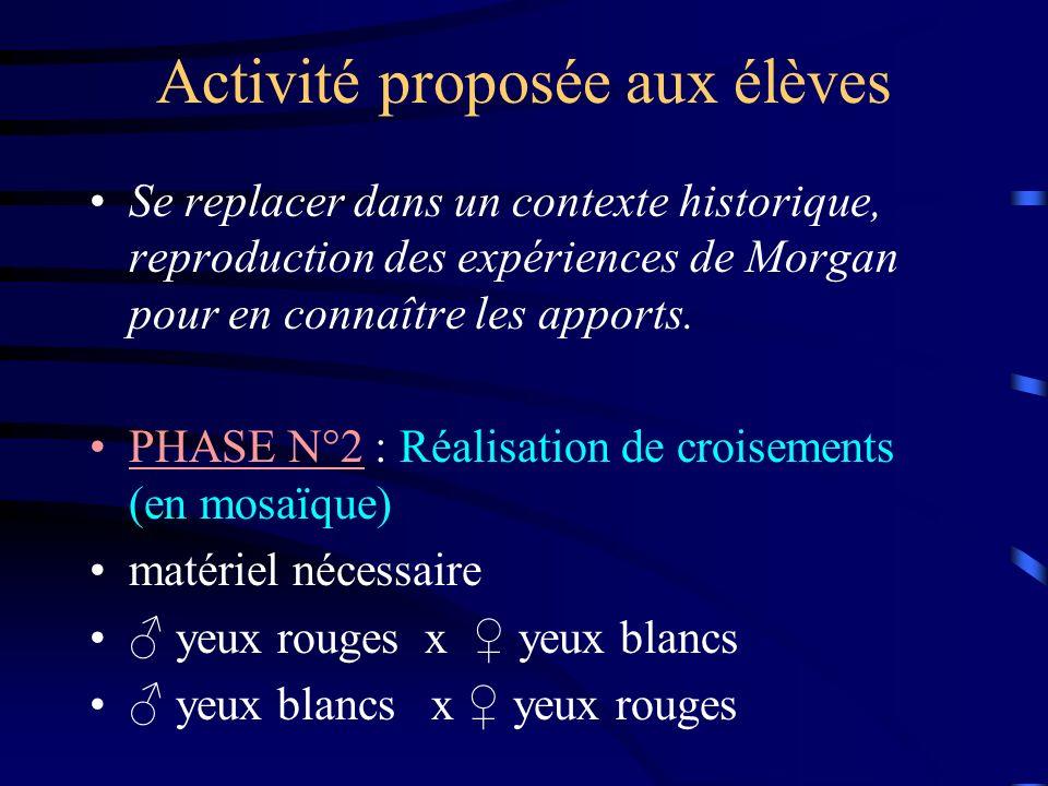 Activité proposée aux élèves Se replacer dans un contexte historique, reproduction des expériences de Morgan pour en connaître les apports. PHASE N°2