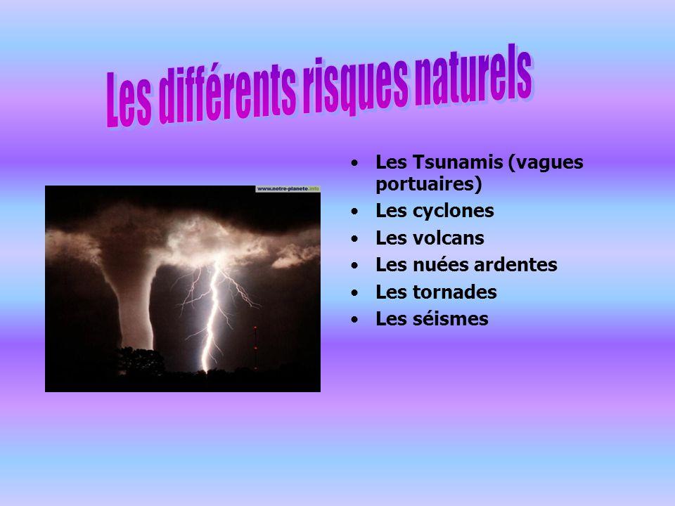 Les Tsunamis (vagues portuaires) Les cyclones Les volcans Les nuées ardentes Les tornades Les séismes