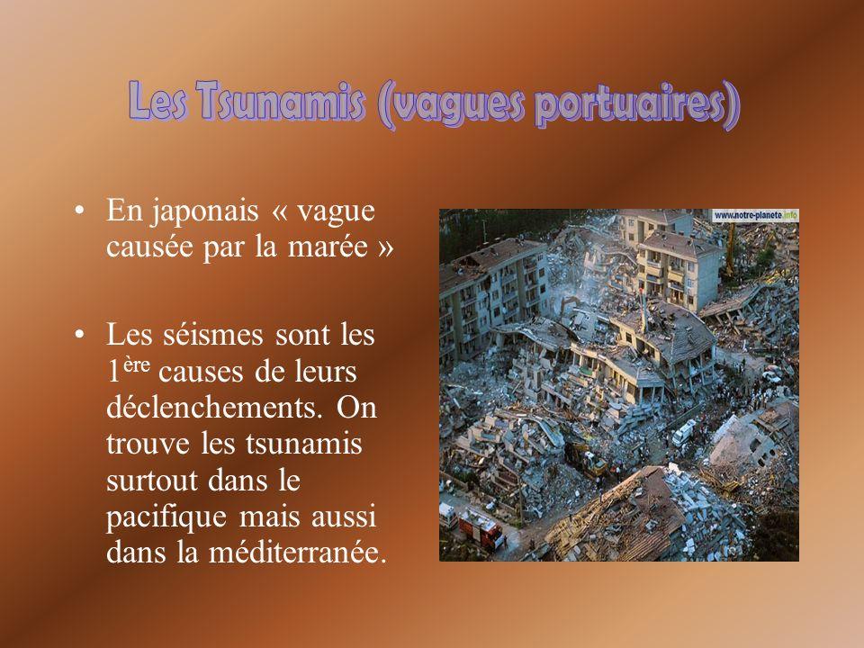 En japonais « vague causée par la marée » Les séismes sont les 1 ère causes de leurs déclenchements. On trouve les tsunamis surtout dans le pacifique