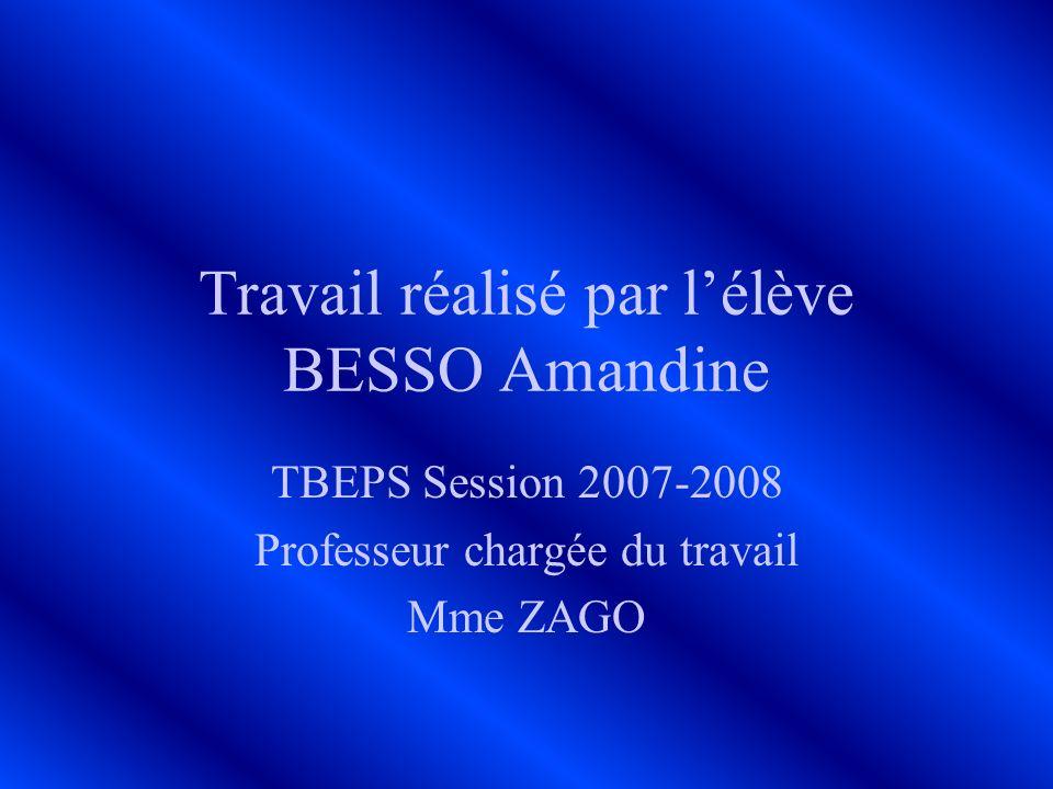Travail réalisé par lélève BESSO Amandine TBEPS Session 2007-2008 Professeur chargée du travail Mme ZAGO