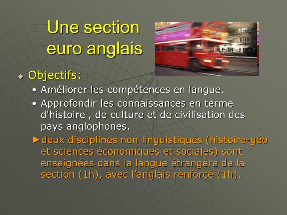 Une section euro anglais Une section euro anglais Objectifs: Objectifs: Améliorer les compétences en langue.Améliorer les compétences en langue. Appro