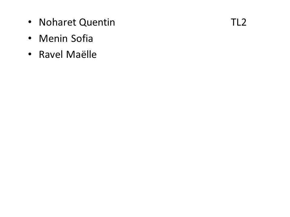 Noharet QuentinTL2 Menin Sofia Ravel Maëlle