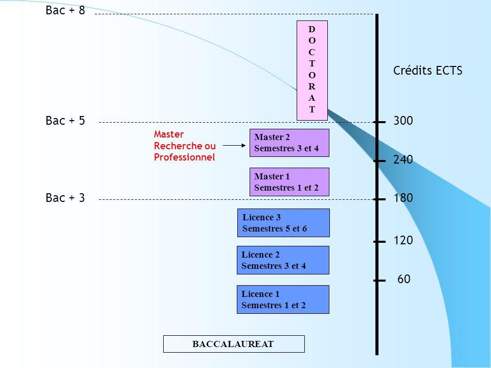 BACCALAUREAT Licence 1 Semestres 1 et 2 Licence 2 Semestres 3 et 4 Licence 3 Semestres 5 et 6 Master 1 Semestres 1 et 2 Master 2 Semestres 3 et 4 DOCT