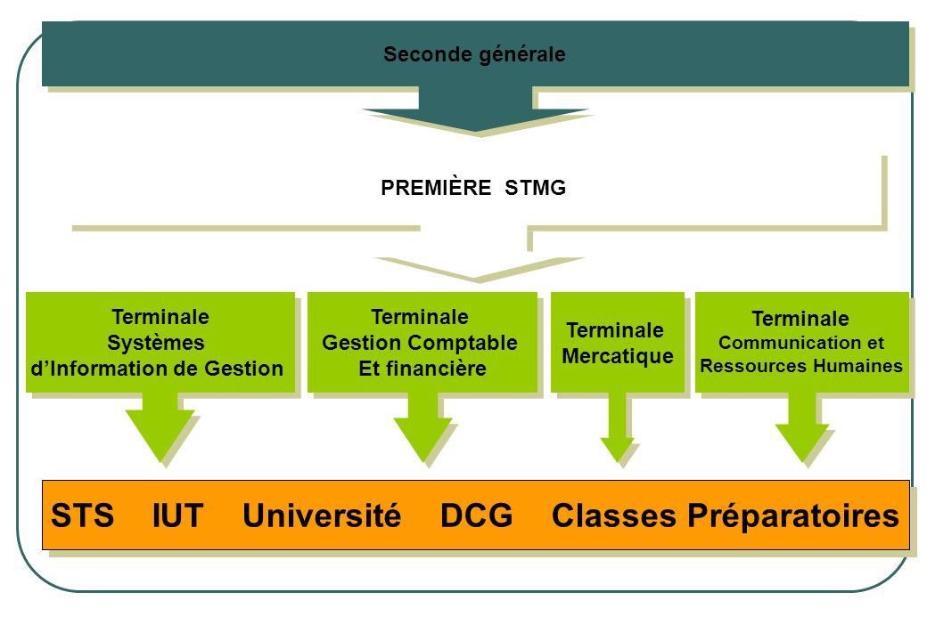 PREMIÈRE STMG Terminale Gestion Comptable Et financière Terminale Gestion Comptable Et financière Terminale Mercatique Terminale Systèmes dInformation