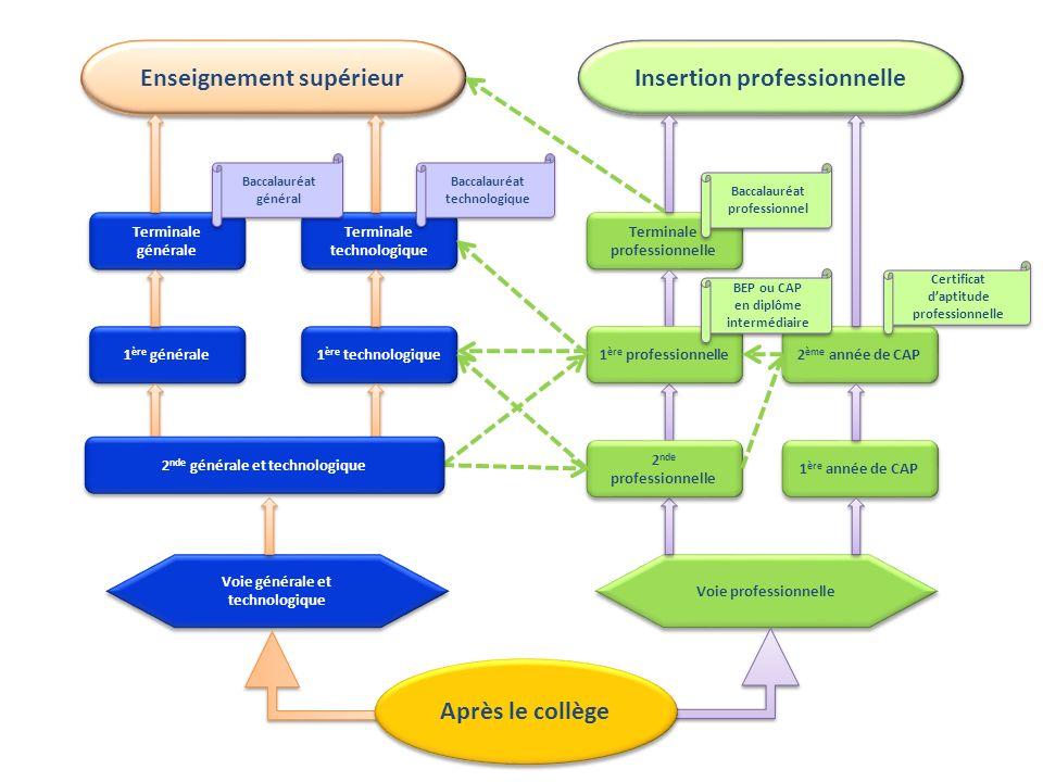 La voie professionnelle est organisée autour de deux diplômes : Le CAP : 2 ans de formation : Les CAP permettent dacquérir un premier niveau de qualification professionnelle : comme, par exemple, le CAP Prêt-à-Porter.