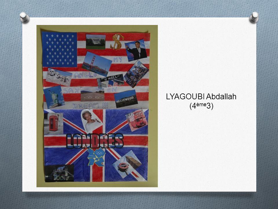LYAGOUBI Abdallah (4 ème 3)