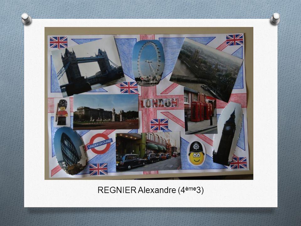 REGNIER Alexandre (4 ème 3)