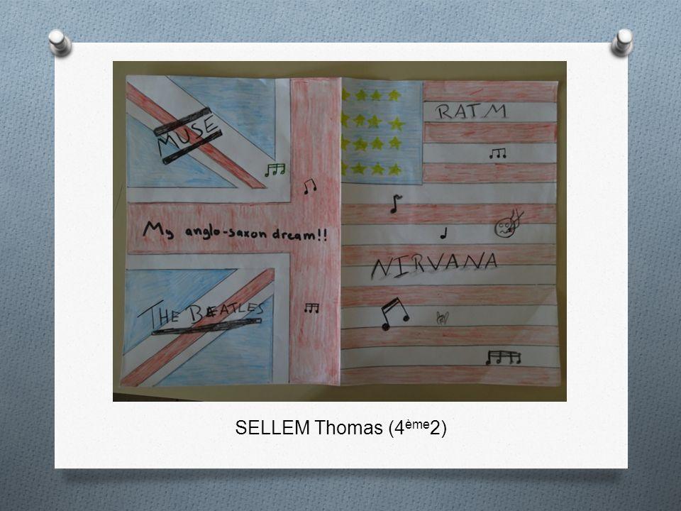 SELLEM Thomas (4 ème 2)