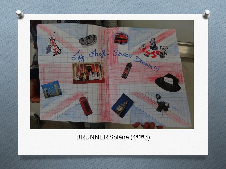 BRÜNNER Solène (4 ème 3)