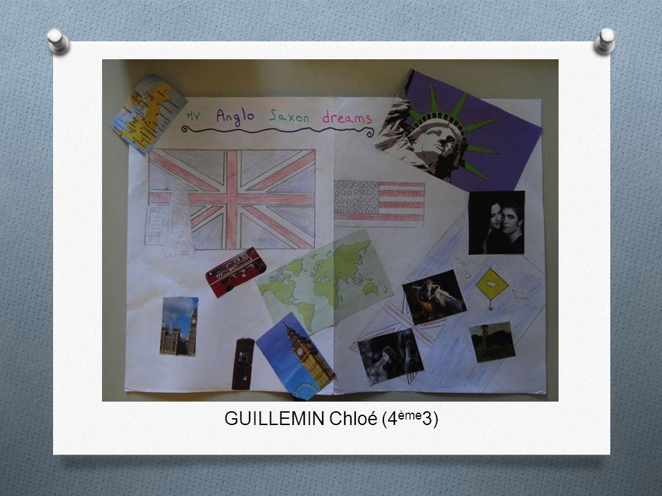 GUILLEMIN Chloé (4 ème 3)
