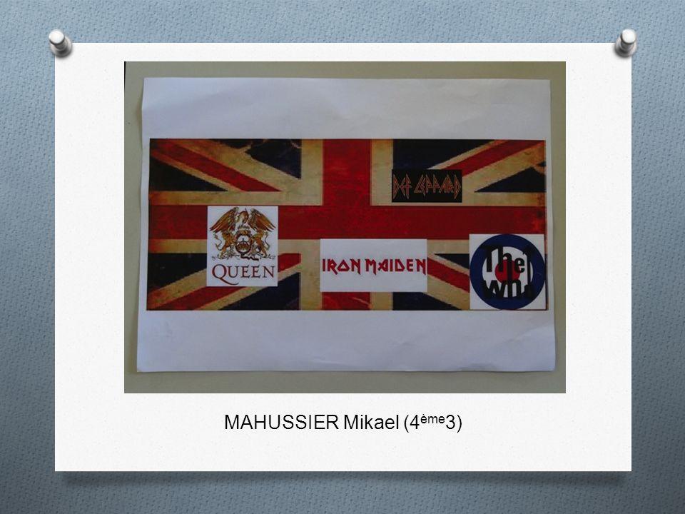 MAHUSSIER Mikael (4 ème 3)
