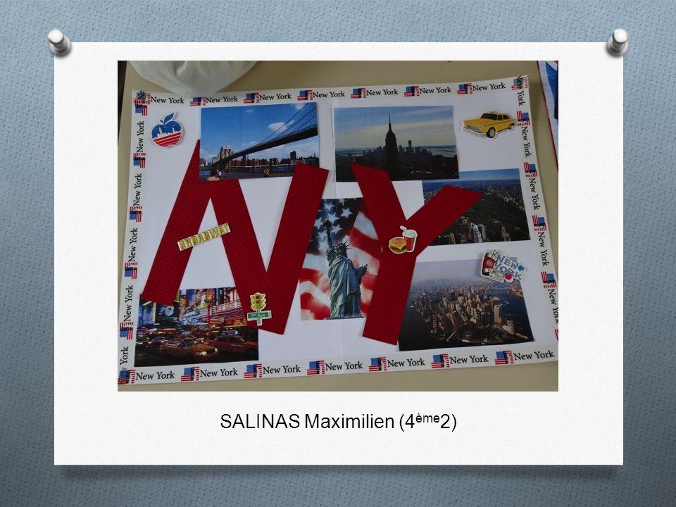 SALINAS Maximilien (4 ème 2)