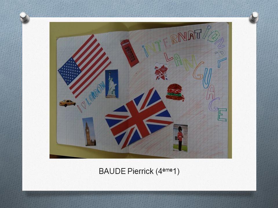 BAUDE Pierrick (4 ème 1)