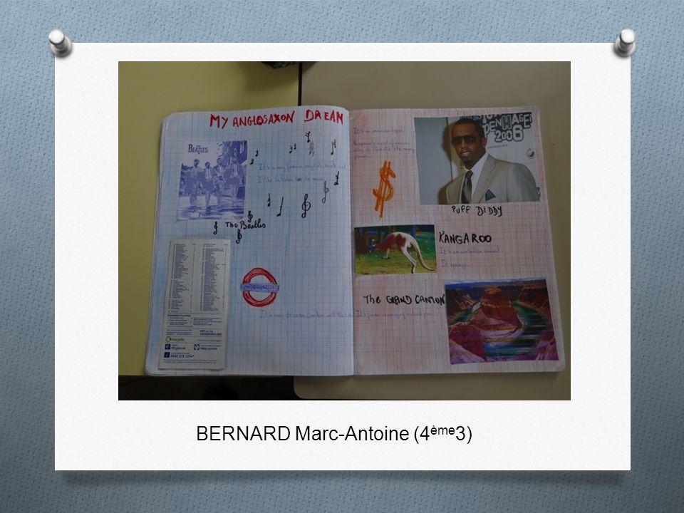 BERNARD Marc-Antoine (4 ème 3)