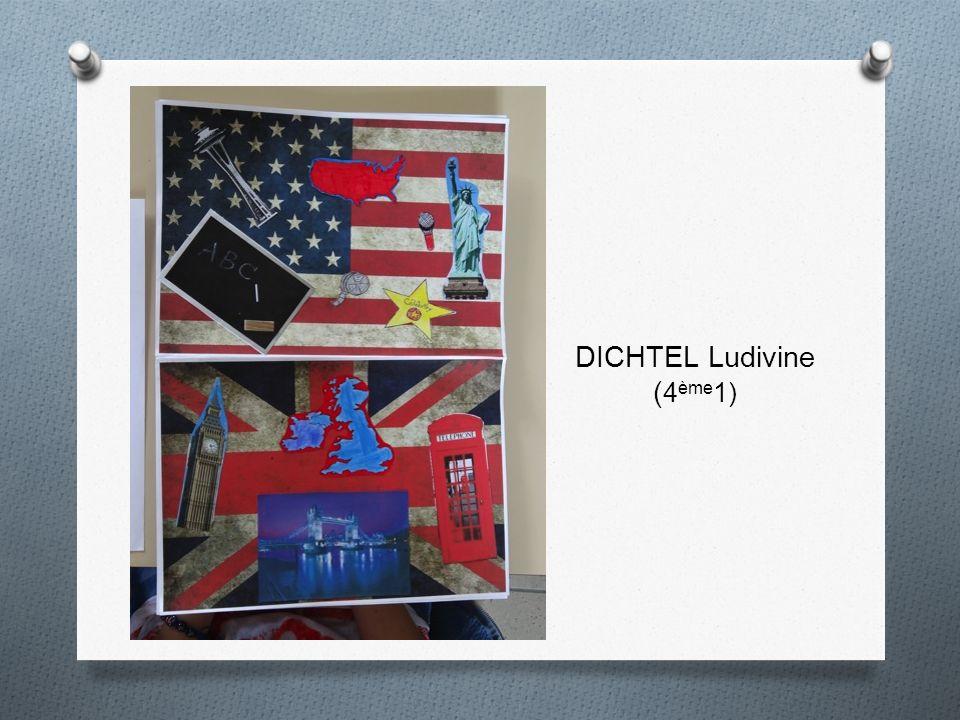 DICHTEL Ludivine ( 4 ème 1)