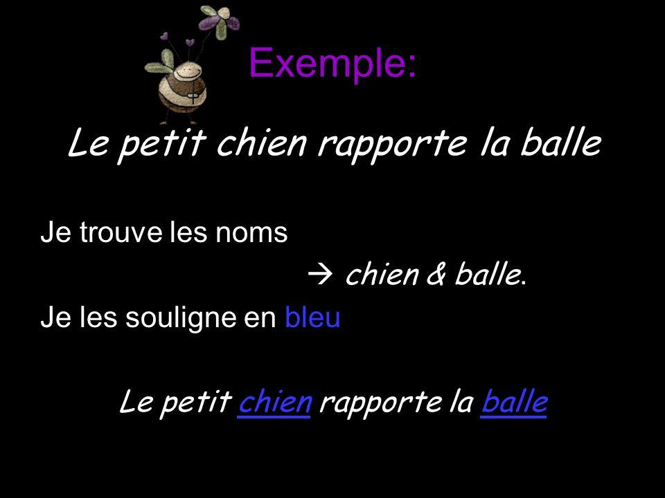 Exemple: Le petit chien rapporte la balle Je trouve les noms chien & balle. Je les souligne en bleu Le petit chien rapporte la balle