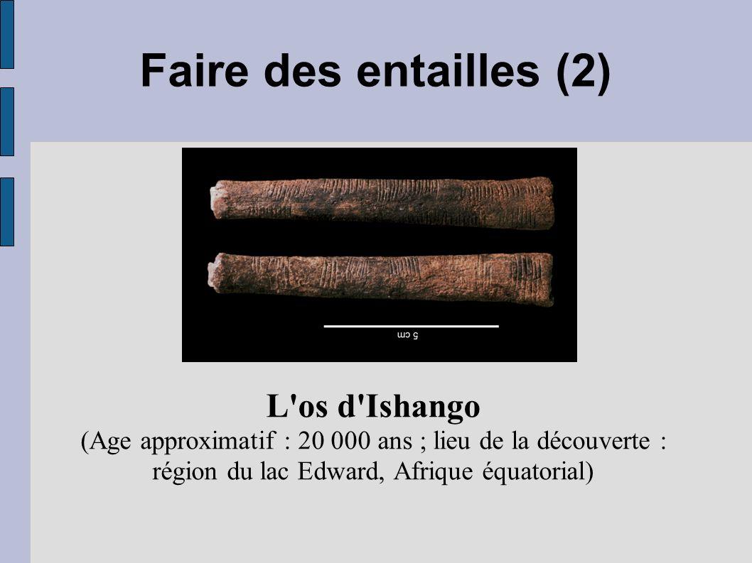 Faire des entailles (2) L'os d'Ishango (Age approximatif : 20 000 ans ; lieu de la découverte : région du lac Edward, Afrique équatorial)