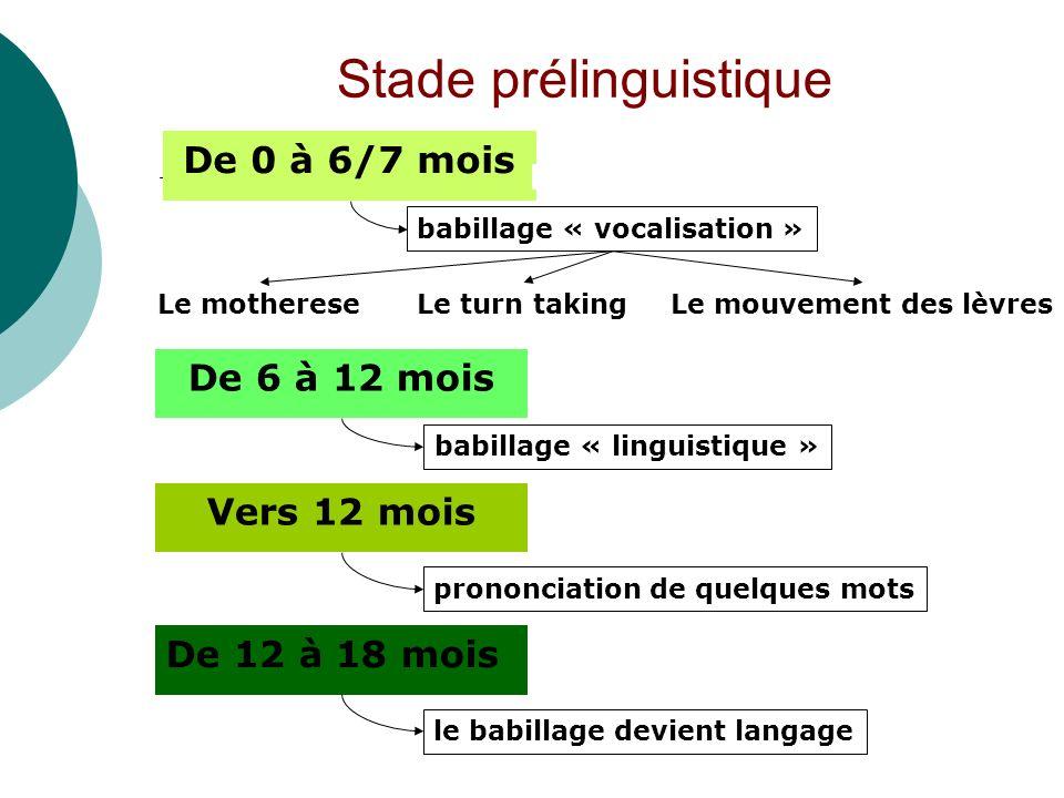 De 0 à 6/7 mois Stade prélinguistique De 6 à 12 mois De 12 à 18 mois babillage « vocalisation » Le mothereseLe turn takingLe mouvement des lèvres babi