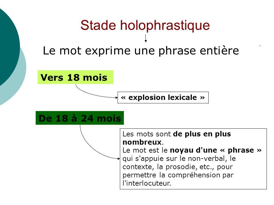 Stade holophrastique Le mot exprime une phrase entière Vers 18 mois « explosion lexicale » De 18 à 24 mois Les mots sont de plus en plus nombreux. Le