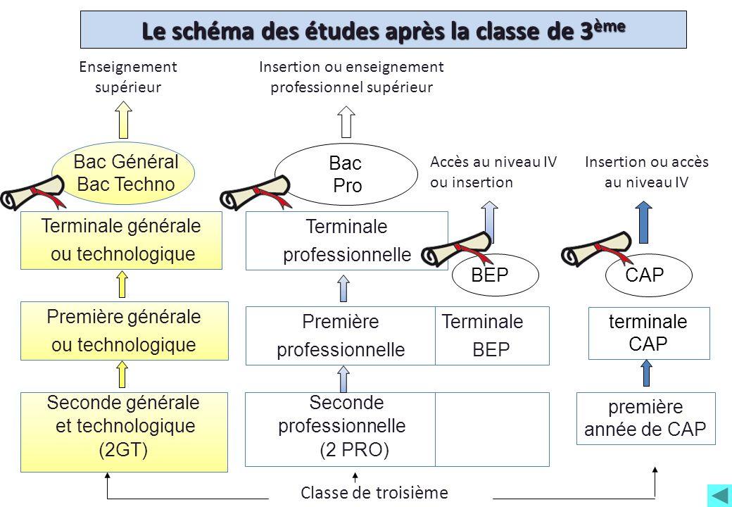 Le schéma des études après la classe de 3 ème Seconde professionnelle (2 PRO) première année de CAP Première générale ou technologique Terminale génér