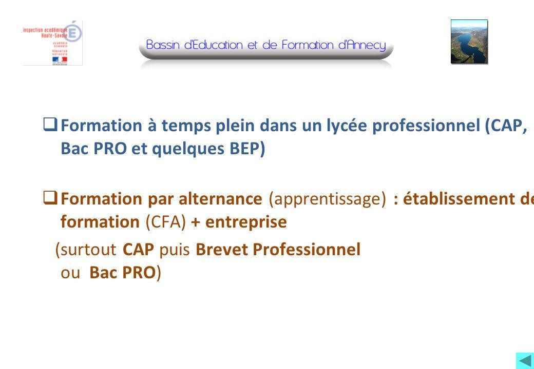 Formation à temps plein dans un lycée professionnel (CAP, Bac PRO et quelques BEP) Formation par alternance (apprentissage) : établissement de formati