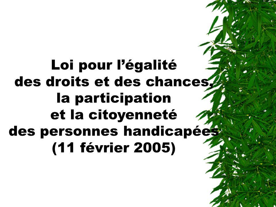 Loi pour légalité des droits et des chances, la participation et la citoyenneté des personnes handicapées (11 février 2005)