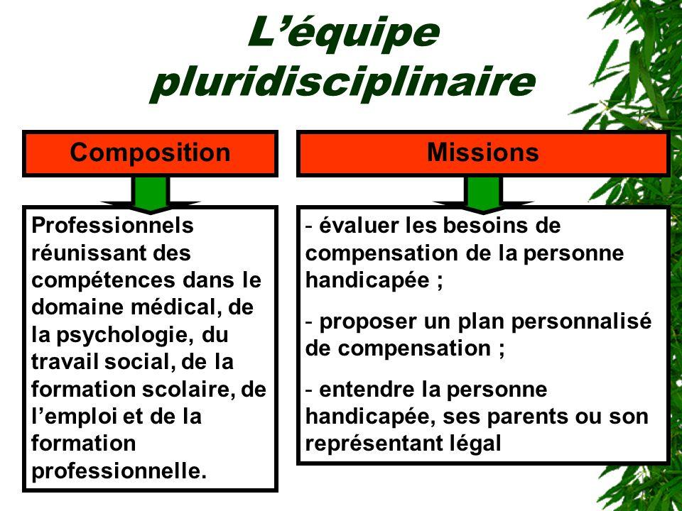 Léquipe pluridisciplinaire - évaluer les besoins de compensation de la personne handicapée ; - proposer un plan personnalisé de compensation ; - enten