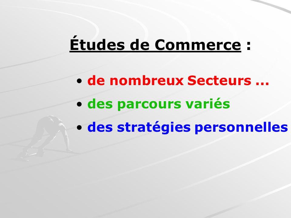Études de Commerce : de nombreux Secteurs... des parcours variés des stratégies personnelles