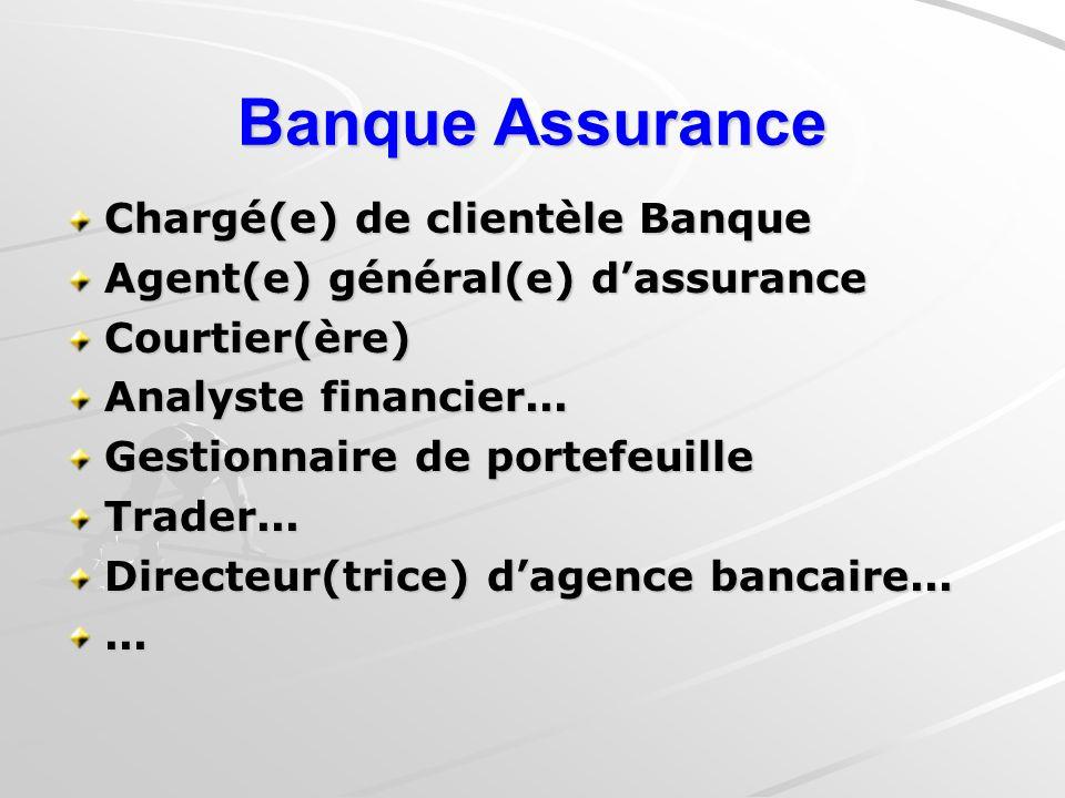 Banque Assurance Chargé(e) de clientèle Banque Agent(e) général(e) dassurance Courtier(ère) Analyste financier...