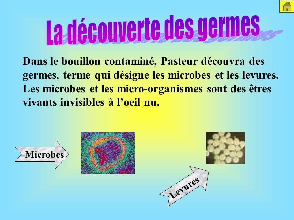Comme lair contient des particules vivantes, il a contaminé la culture stérilisée. Les microbes se sont reproduits grâce à loxygène contenu dans lair.
