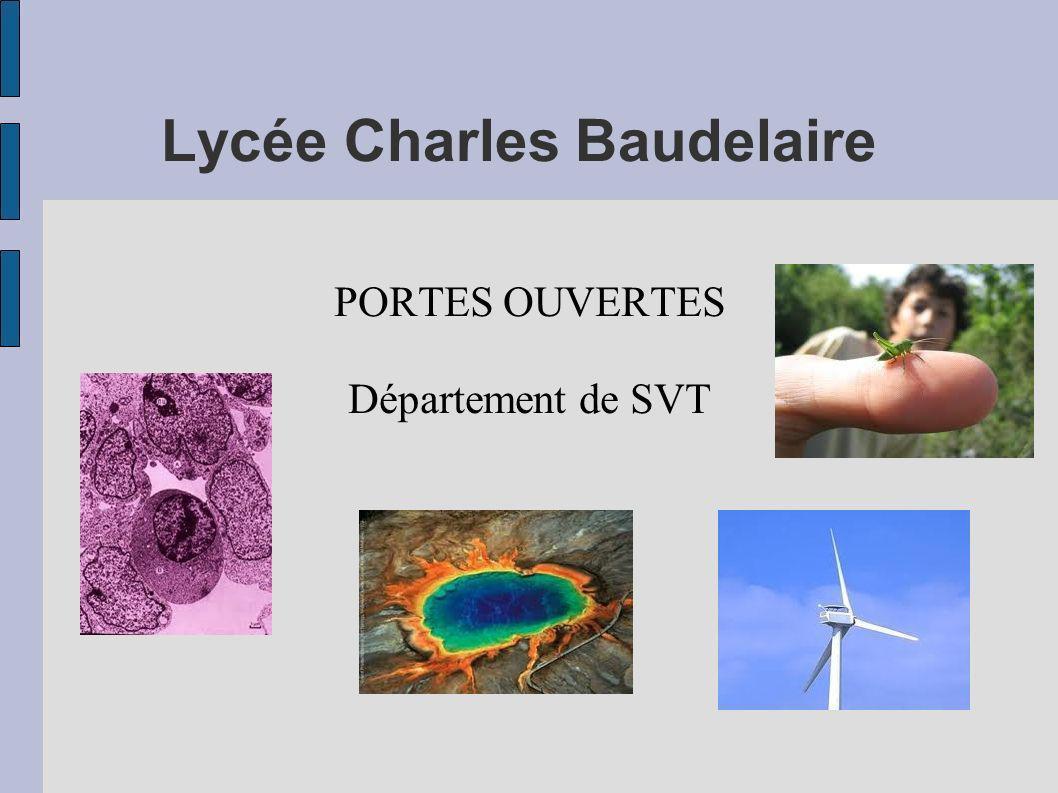 Lycée Charles Baudelaire PORTES OUVERTES Département de SVT