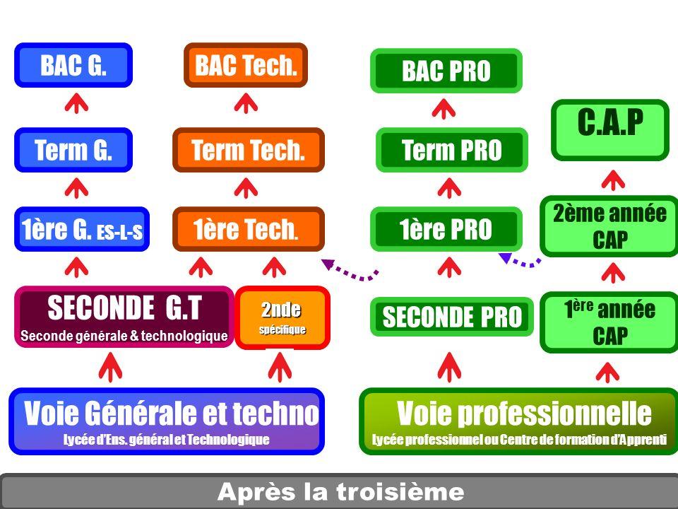 Après la troisième SECONDE G.T Seconde générale & technologique SECONDE PRO 1 ère année CAP Voie professionnelle Lycée professionnel ou Centre de form