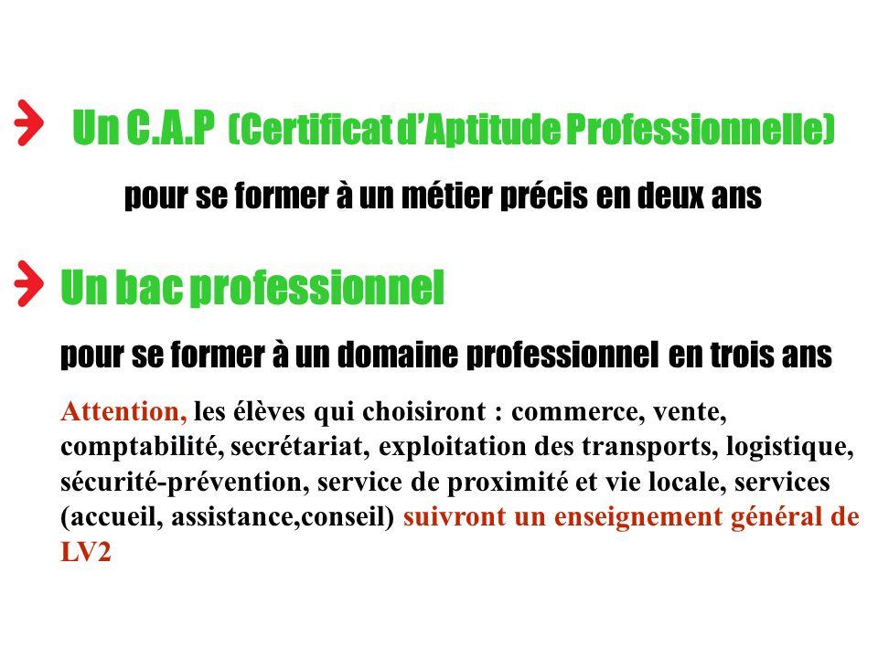Un C.A.P (Certificat dAptitude Professionnelle) pour se former à un métier précis en deux ans Un bac professionnel pour se former à un domaine profess