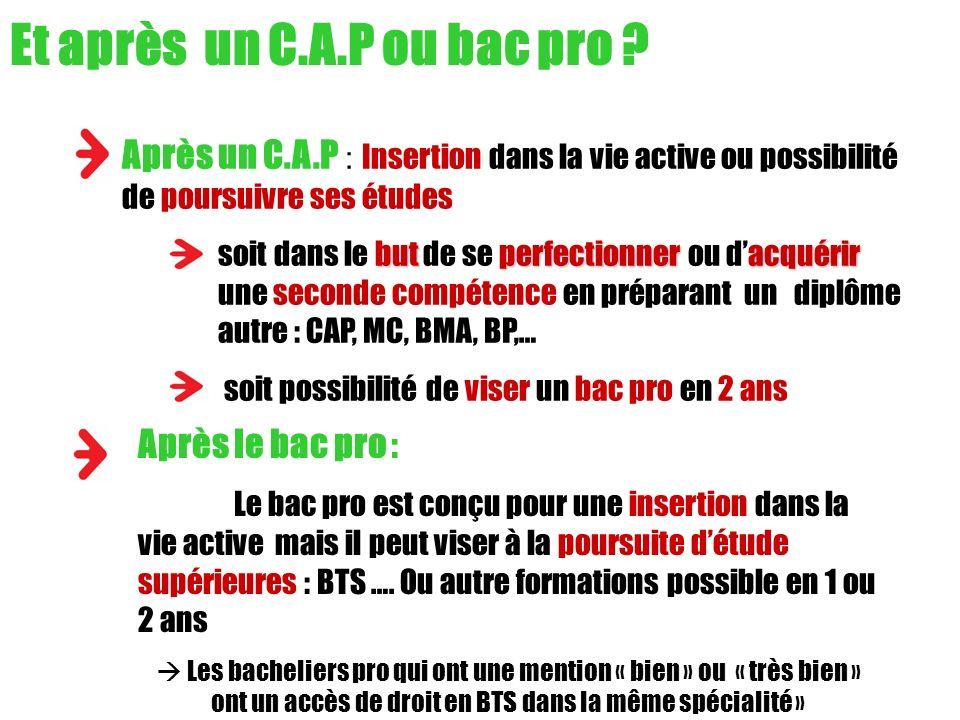 Après un C.A.P : Insertion dans la vie active ou possibilité de poursuivre ses études butperfectionner acquérir soit dans le but de se perfectionner o