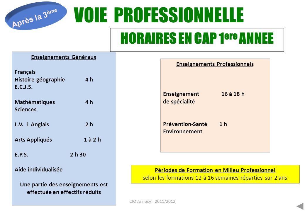 CIO Annecy - 2011/2012 VOIE PROFESSIONNELLE Après la 3 ème En entreprise : acquérir une compétence professionnelle.