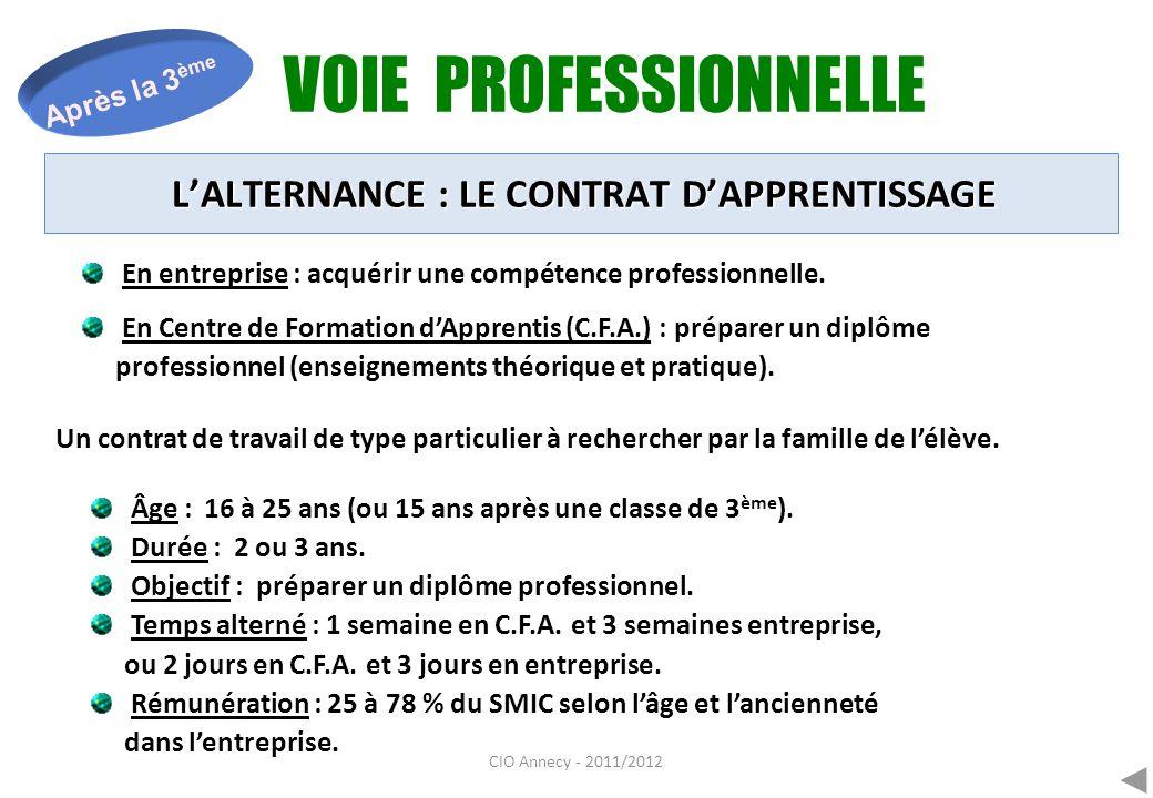 CIO Annecy - 2011/2012 VOIE PROFESSIONNELLE Après la 3 ème En entreprise : acquérir une compétence professionnelle. En Centre de Formation dApprentis