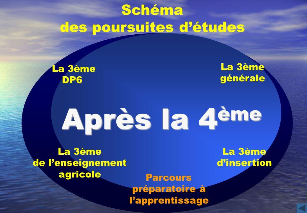 La 3ème générale Schéma des poursuites détudes La 3ème DP6 La 3ème dinsertion Après la 4 ème La 3ème de lenseignement agricole Parcours préparatoire à