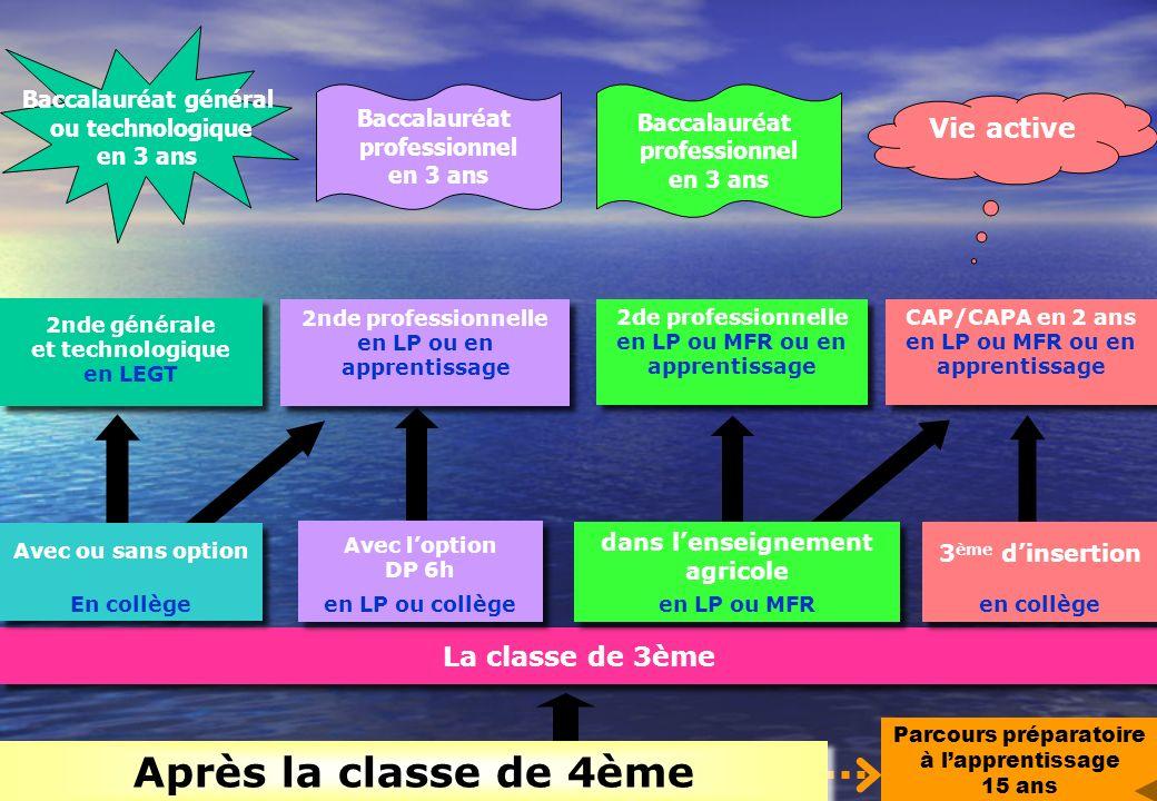 La classe de 3ème Parcours préparatoire à lapprentissage 15 ans 2nde générale et technologique en LEGT 2nde générale et technologique en LEGT 2nde pro