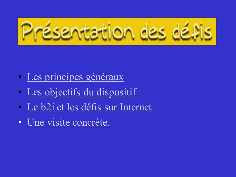 Les principes généraux Les objectifs du dispositif Le b2i et les défis sur Internet Une visite concrète.