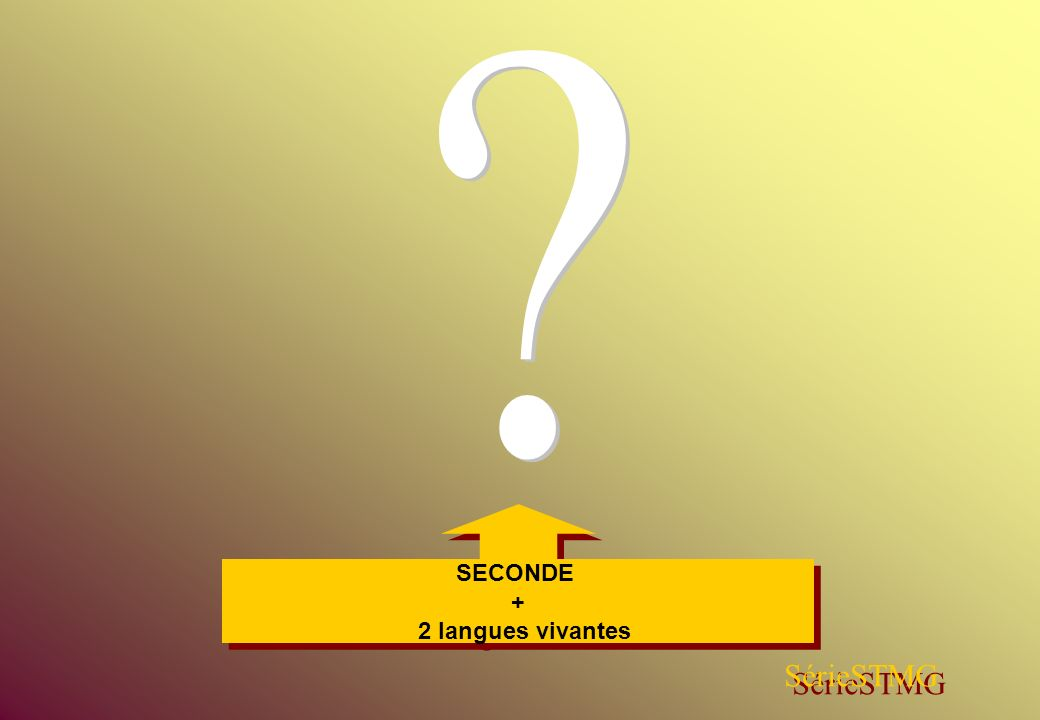 SECONDE + 2 langues vivantes SECONDE + 2 langues vivantes SérieSTMG