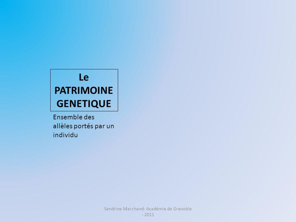 Le PATRIMOINE GENETIQUE Ensemble des allèles portés par un individu Sandrine Marchand- Académie de Grenoble - 2011