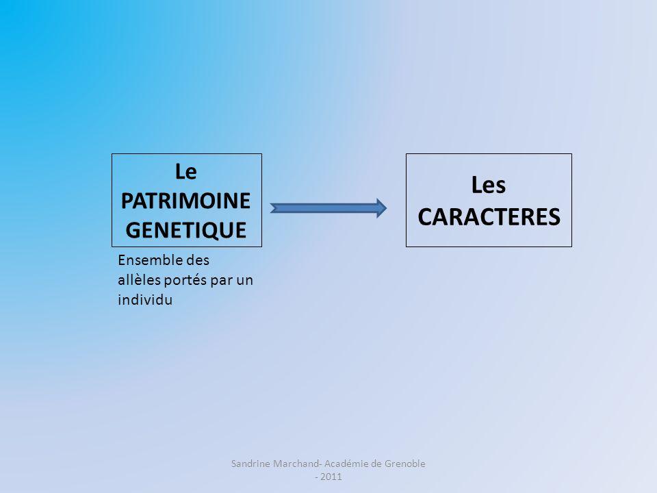 Le PATRIMOINE GENETIQUE Les CARACTERES Ensemble des caractéristiques de lindividu Ensemble des allèles portés par un individu Sandrine Marchand- Académie de Grenoble - 2011