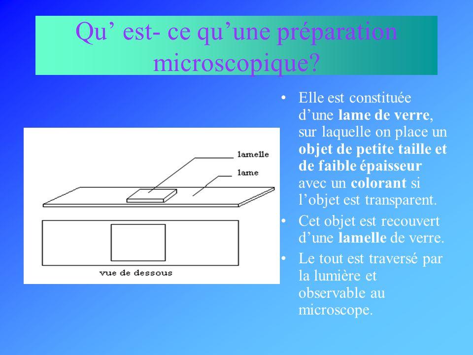 Matériel nécessaire Lame de verre Lamelle de verre Pinces fines Compte- gouttes Liquide de préparation (eau colorée ou non) ciseaux